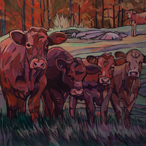 Curious Cows – SOLD