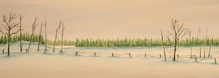 Landscape Divided (sold)