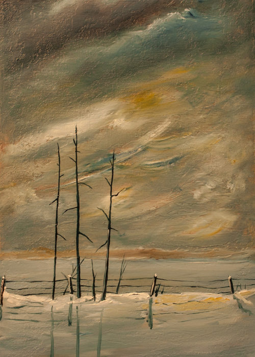 Winter Storm Approaching (SOLD)