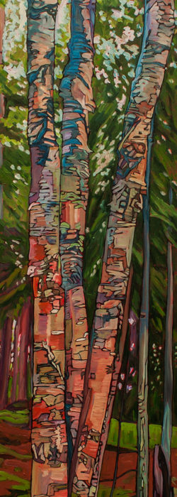 Summer Birches – Sold